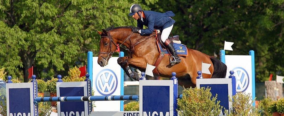 Cavalli da salto ostacoli