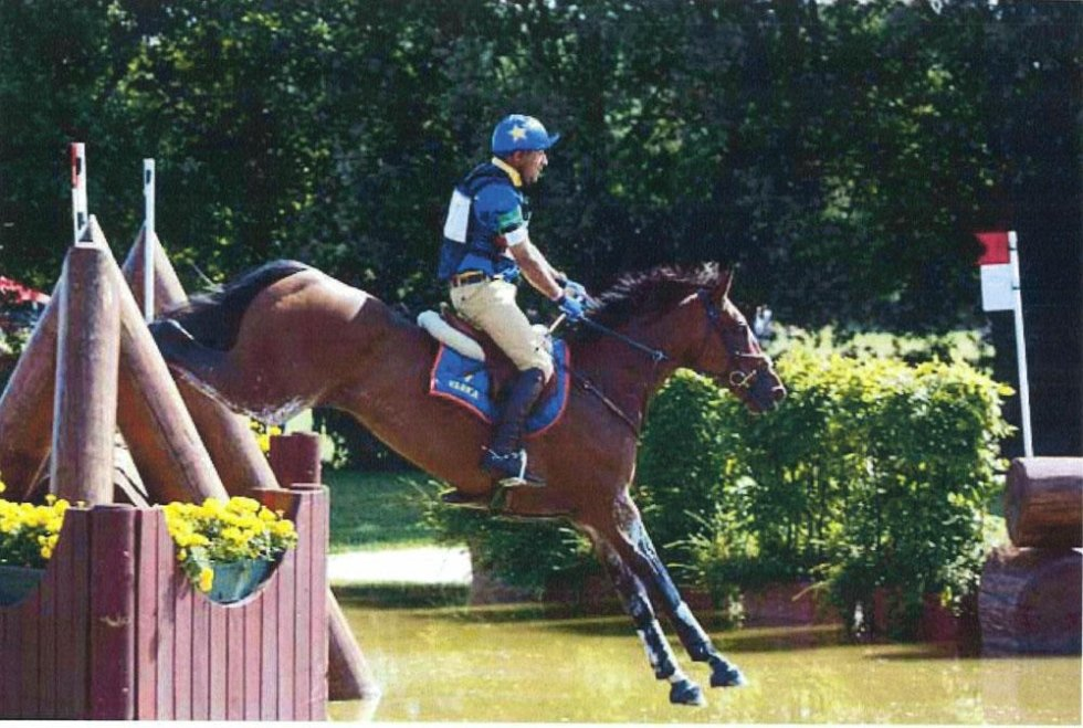 show jumping outdoors