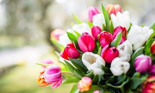 Realizzazione di addobbi floreali