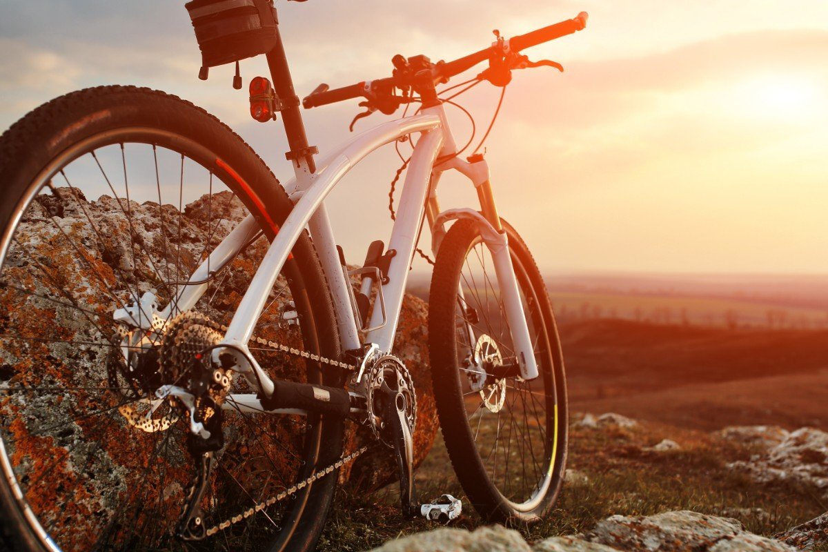 una mountain bike su un prato