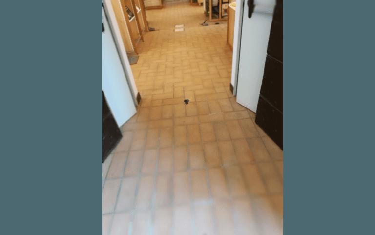 trattamenti del cotto, trattamento pavimenti in cotto, ripristino pavimenti in cotto, Cerveteri, Roma