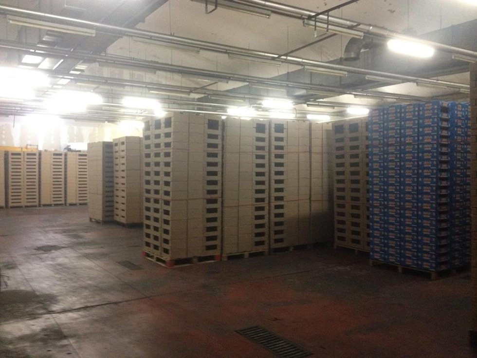 G.P. Imballaggi Cartone - magazzino e stoccaggio