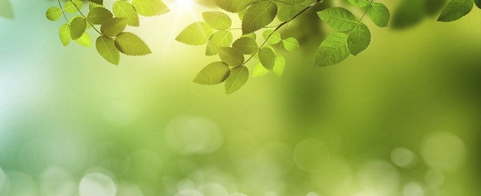 acustica ambientale - Bergamo