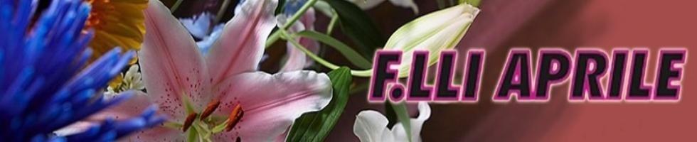 Agenzia funebre F.lii Aprile