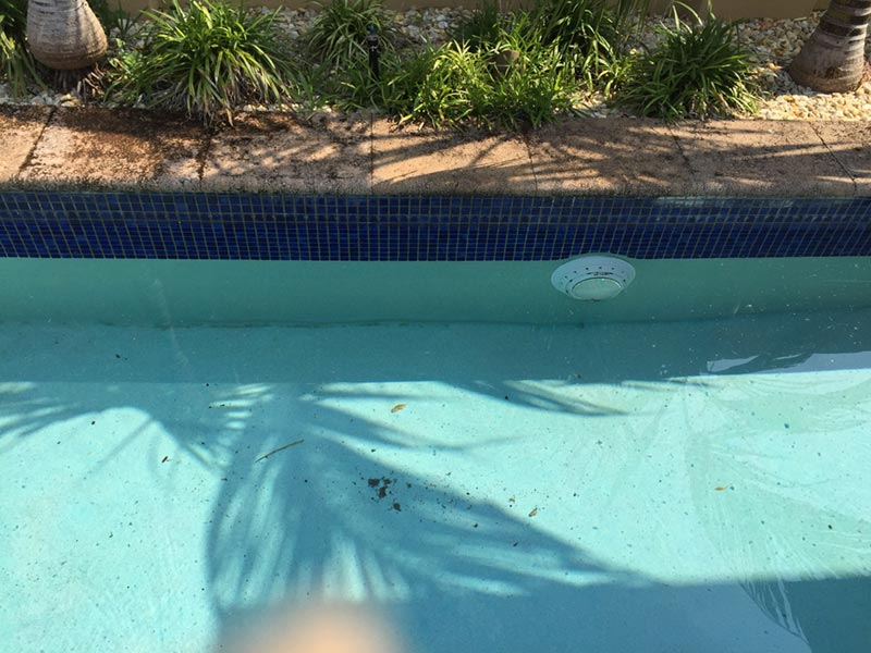 dirty swimming pool in perth