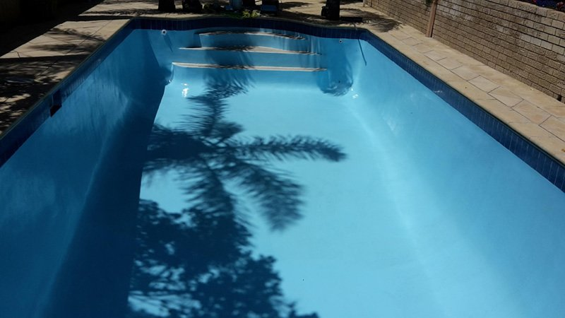 swimming pool with shadow of trees