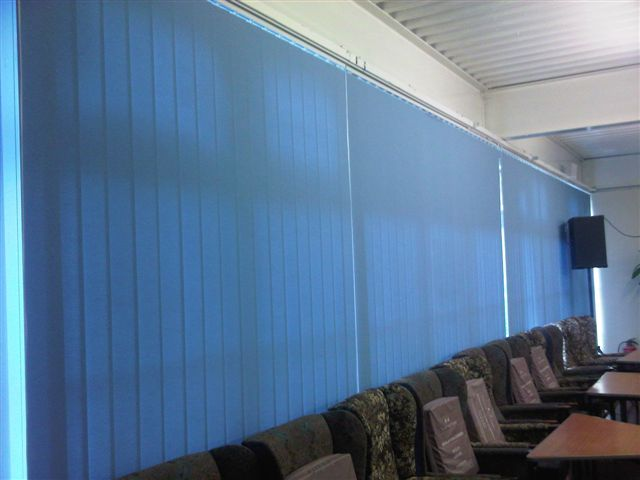 blue blinds