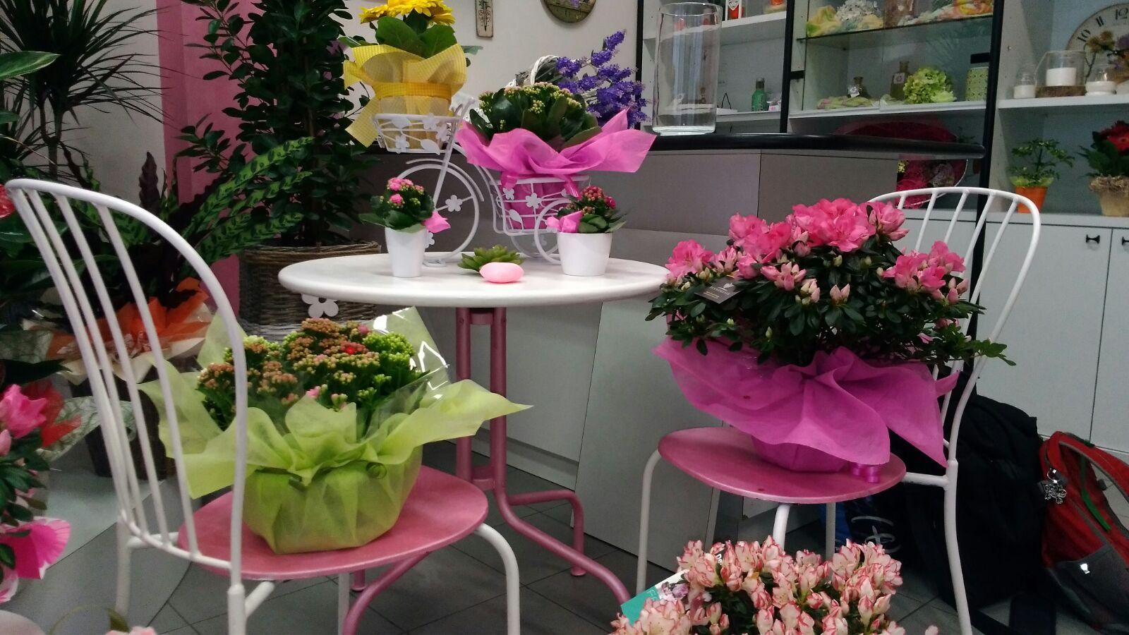 piante su tavolini all'interno di negozio di fiori
