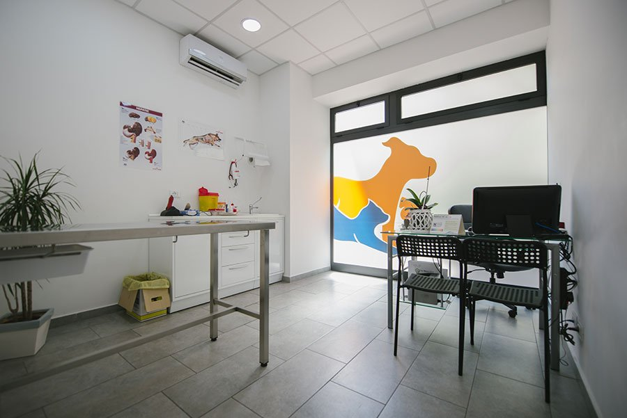 Interno dell'ambulatorio veterinario