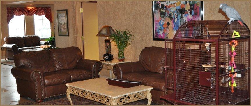 Lobby Area Pet Friendly Hotels Buffalo NY