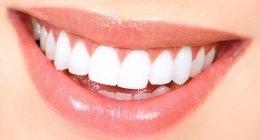 odontoiatria conservativa, endodonzia, protesi fissa e mobile, ortodonzia