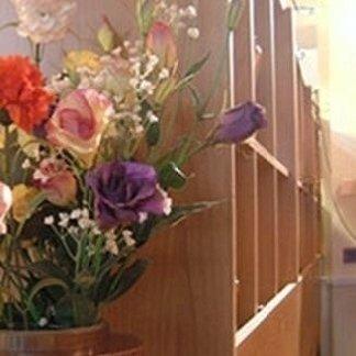 piante da ornamento