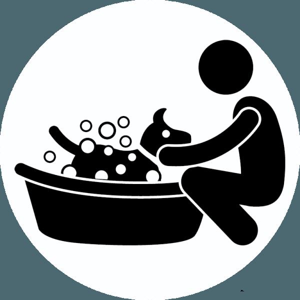 Lavaggio animali domestici