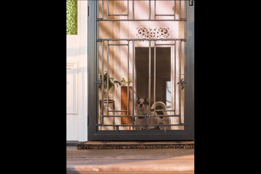 Custom Made Decorative Doors In Ormeau