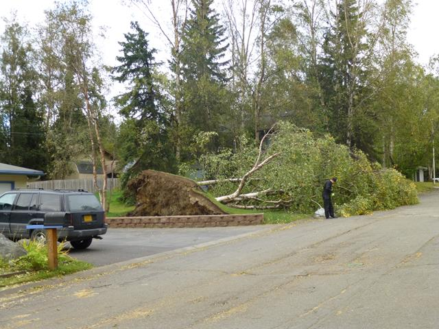 We take storm and wind damage restoration seriously.