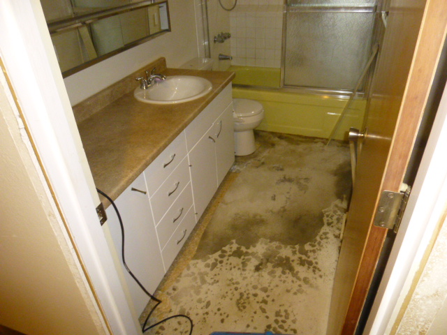 Our crews are trained to handle all types of water damage,