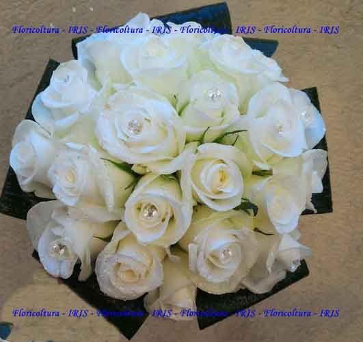 mazzo di rose bianche