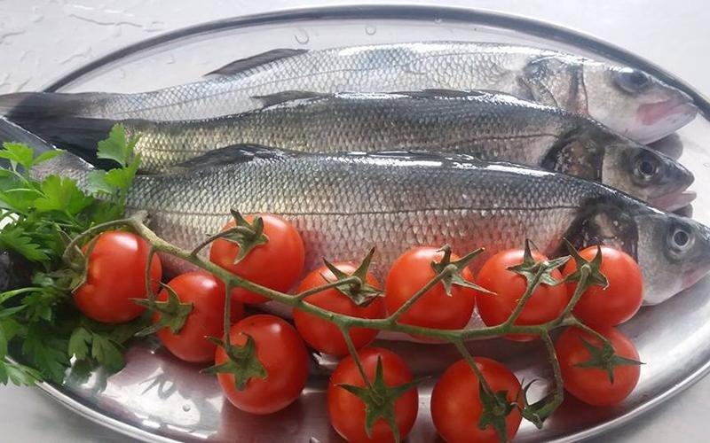 pesce del mediterraneo