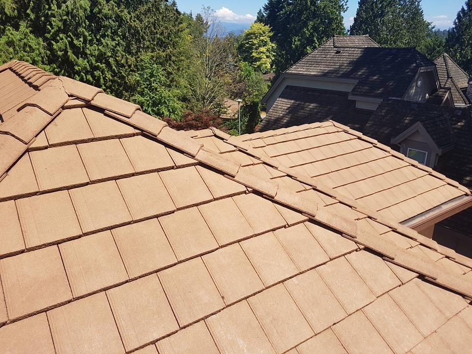 Concrete Tile Repair Roof Estimate Amp Algae Roof Cleaner