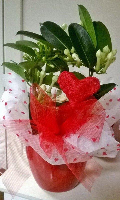 fioraio san valentino
