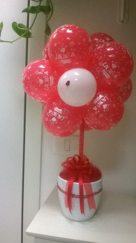 palloncini per laurea