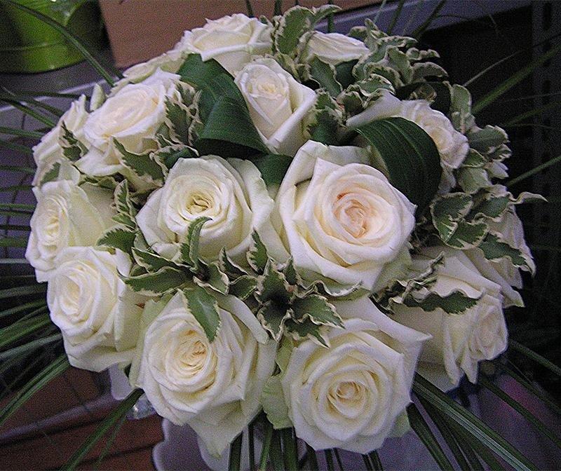 bouquet rose vivaldi