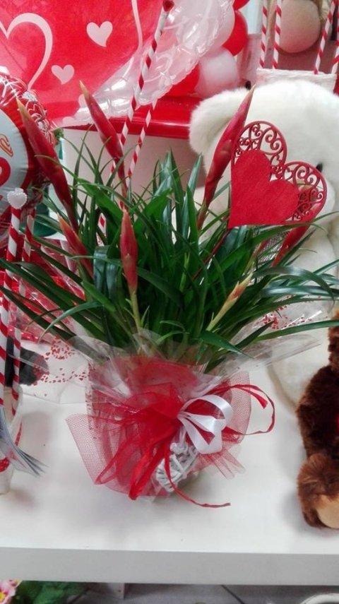 composizione san valentino