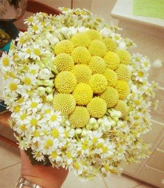 bouquet sposa craspedia e camomilla