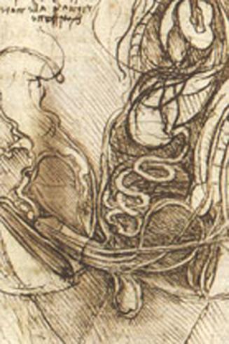 patologie della vescica