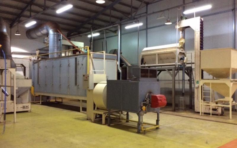 Industrielle Mandelverarbeitung