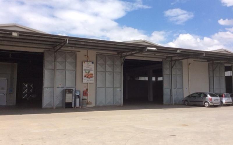 Almond processing company