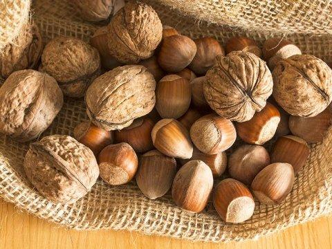 Обработка грецких орехов и фундука из Сицилии