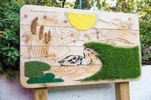 Playground design and installation