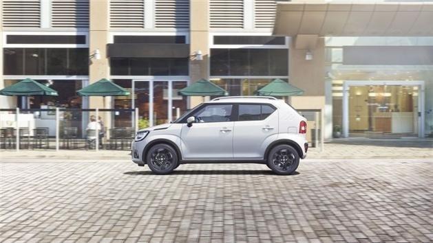 Suzuki bergamo