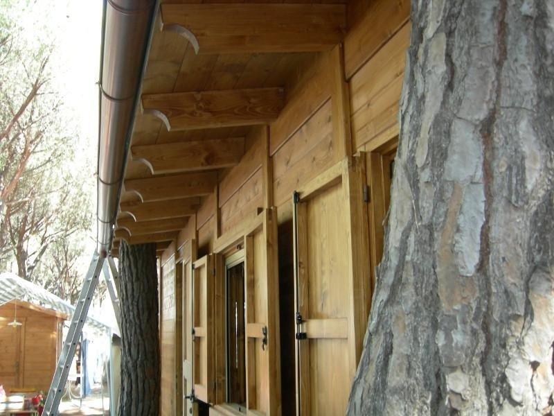 Baita in legno