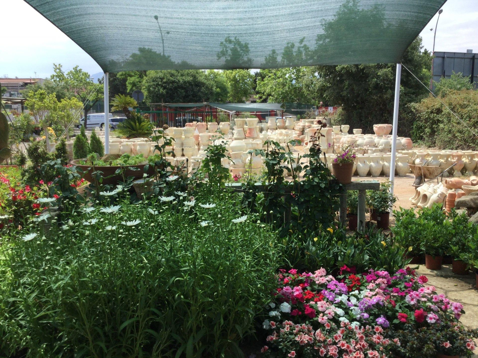 Arredo giardino palermo pa garden michelangelo for Arredo garden
