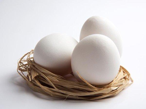 Uova bianche di galline livornesi