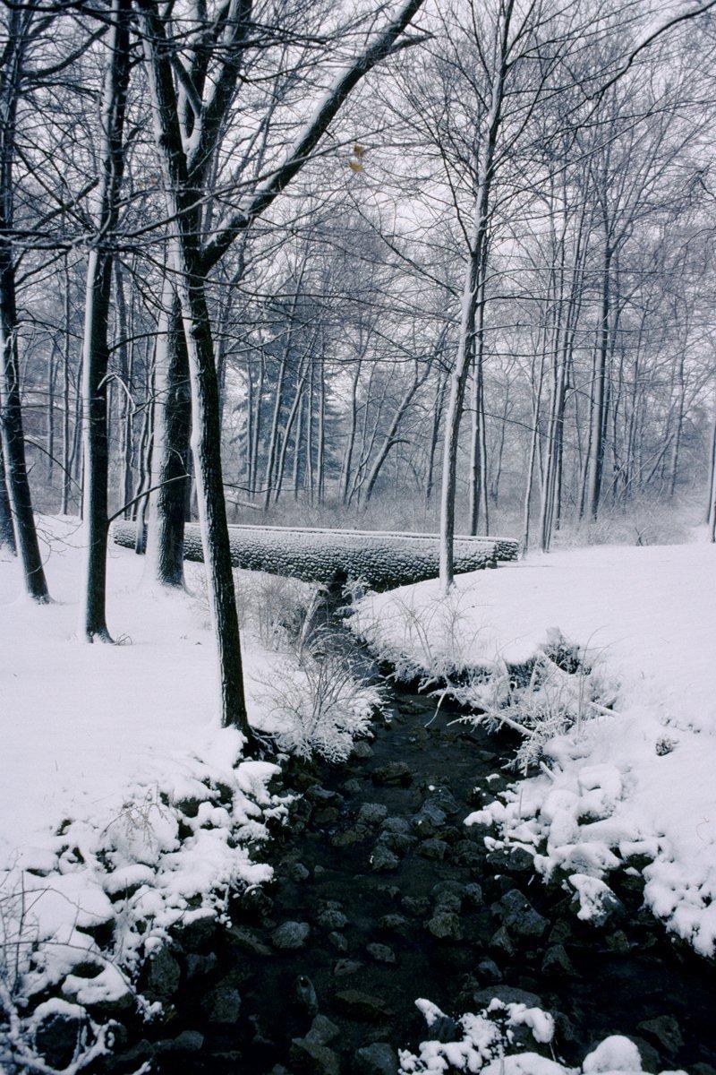 snowy brook at Miami U