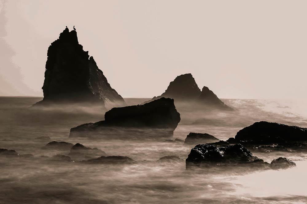 Lost Coast Ten Stop Rocks