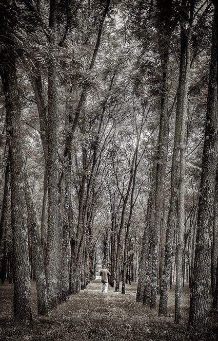 Walnut grove with Chris
