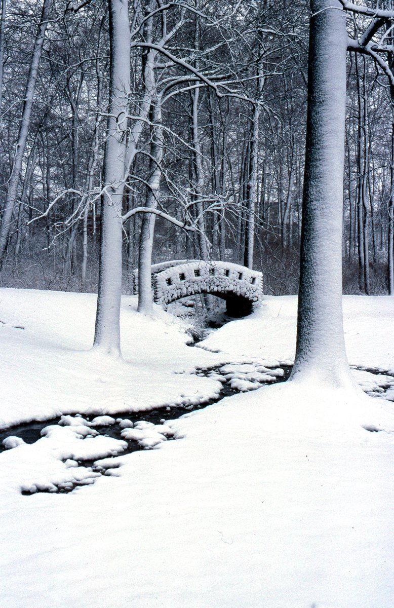westgate in winter brooke