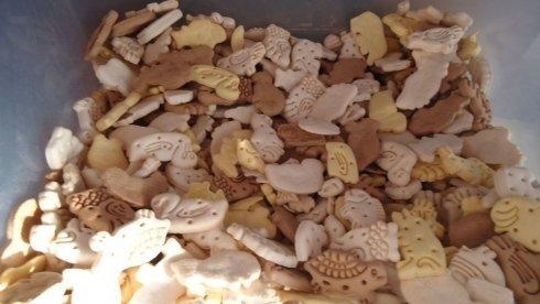 Biscotti Sfusi