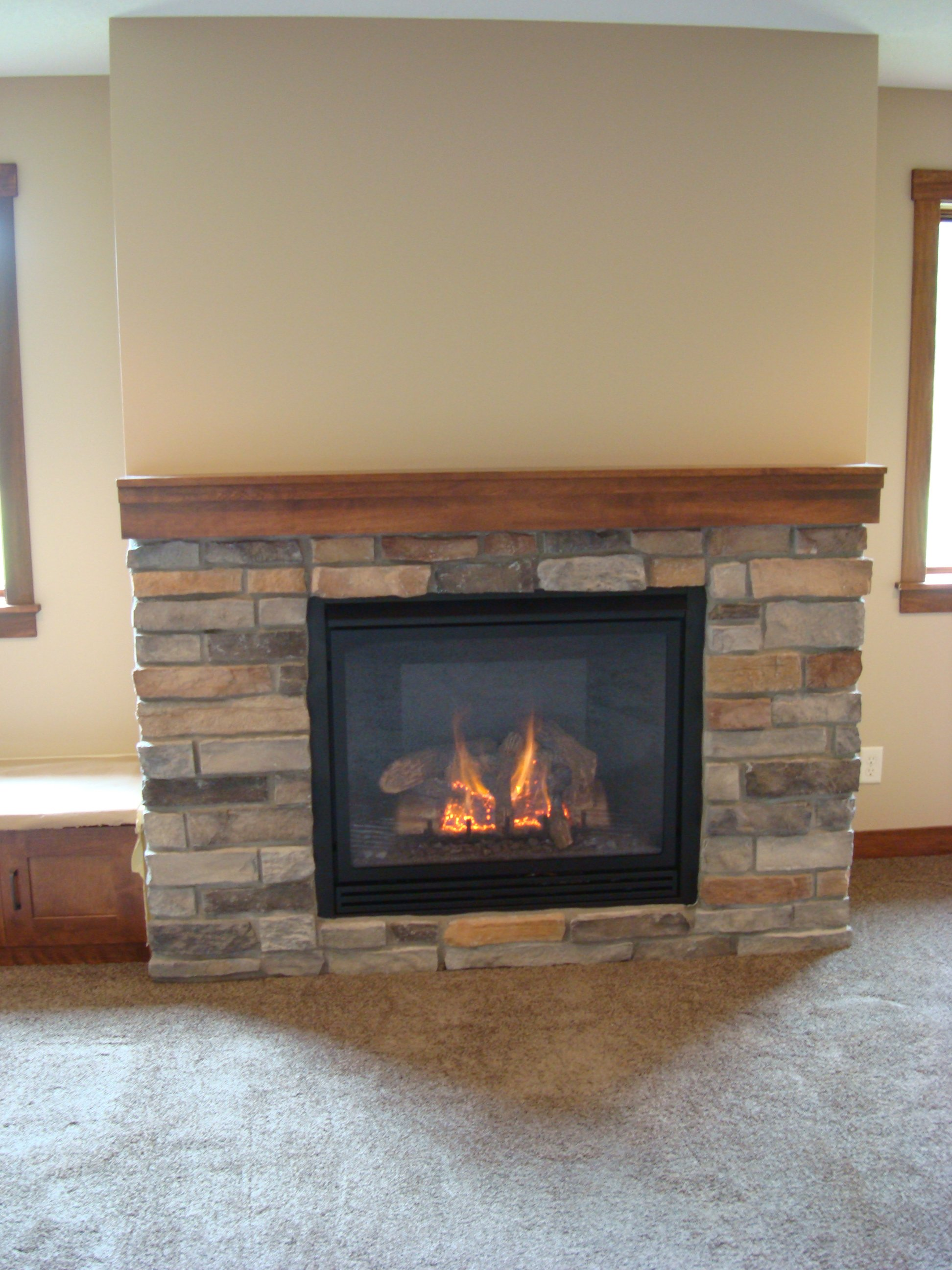 Kozy Heat-Thief River Falls - Traditional Fireplace
