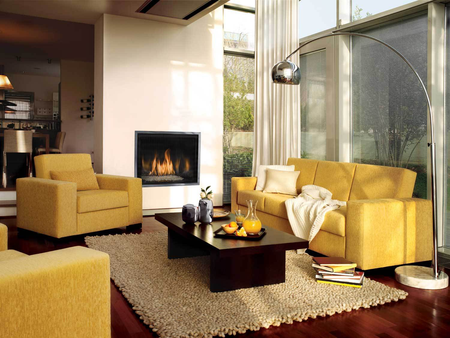 Contemporary Gas Fireplace - Mendota FV41