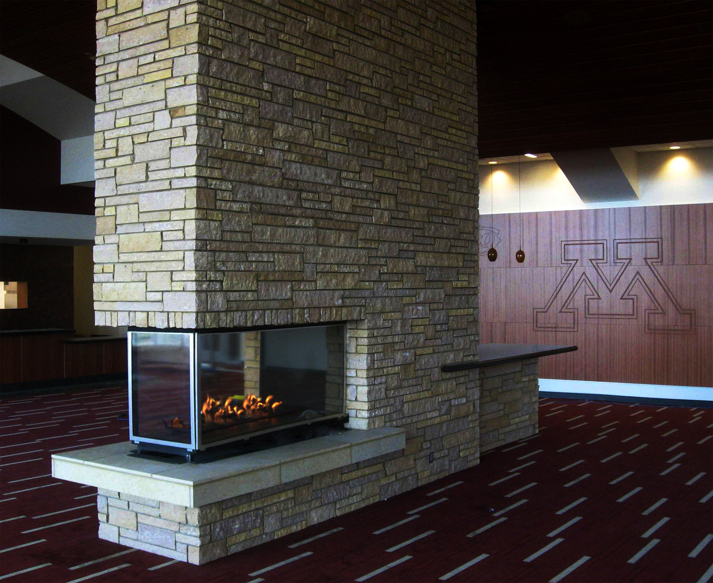 Contemporary Gas Fireplace - CTS2