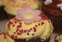 Speciality cakes - Muswell Hill, North London - The Highgate Pantry - cream colored cakes