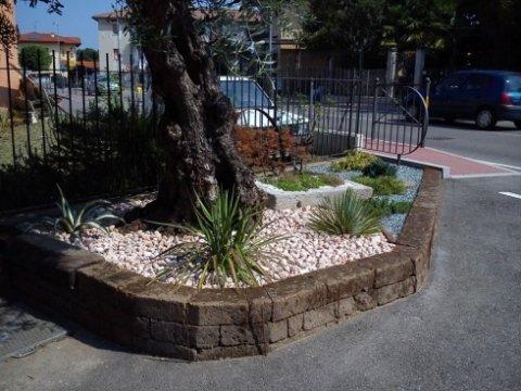 creazione giardini rocciosi