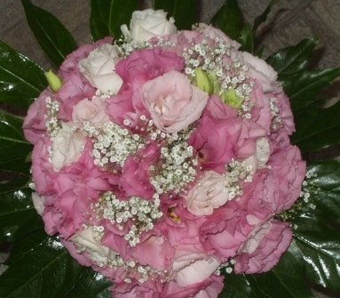 www.fiorilandia.org/