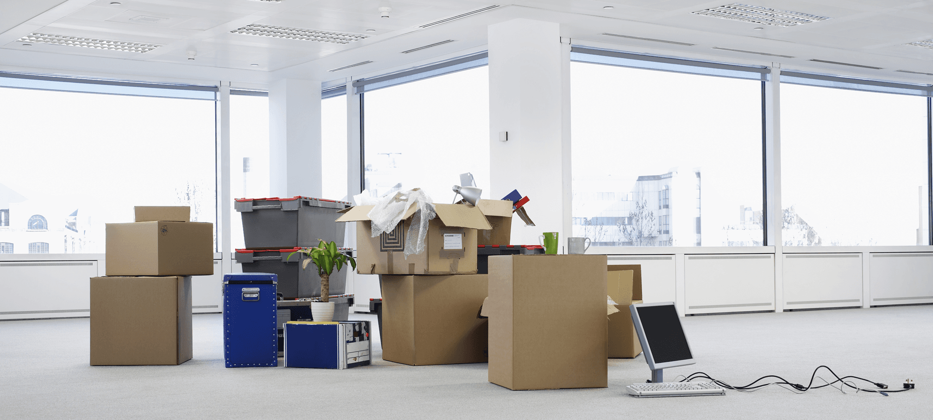 experts in office and home moves