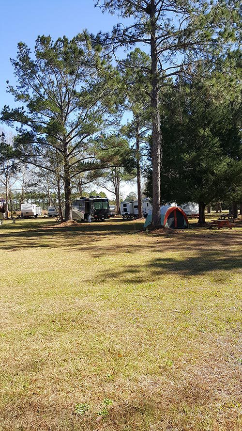 View of the campground site